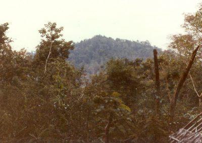 F01 81 1 Mountain